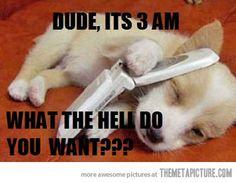 You interrupted my sleep