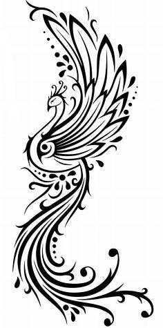 Ailes plus petites et queue plus large mais forme interessante: on peut ajouter des détails graphiques dans les ailes.
