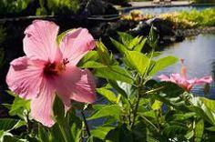 ellieupson posted a photo:  http://ift.tt/298jo8E - http://ift.tt/g8FRpY