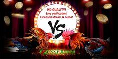 Pada kesempatan kali ini kami sebagai salah satu agen judi sabung ayam online esseayam.com akan membahas tentang Judi sabung ayam online Play Game Online, Online Games, Antara, Filipina, Poker, Philippines, Rooster, Christmas Bulbs, Android