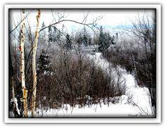 Winterlude Photograph  - Winterlude Fine Art Print