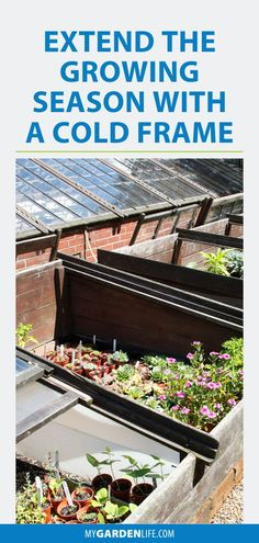 Extend the Growing Season with a Cold Frame Extend the growing season and enjoy fresh veggies through the winter by using cold frames in your garden. Find out how you can use cold frames this season by clicking through this article.
