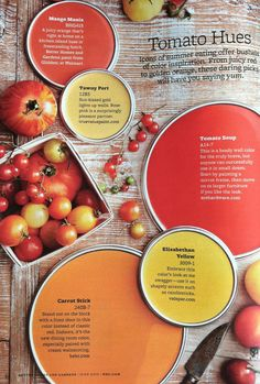 BHG Tomato Hues -this must have been the inspiration for the previous owners of our house.