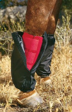Professionals Choice Sports Medicine Boot Covers | ChickSaddlery.com