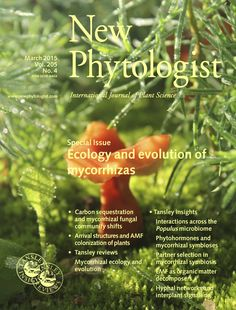 Volume 205, Issue 4, March 2015. Special Issue: Ecology and evolution of mycorrhizas. Carbon sequestration and mycorrhizal fungal community shifts; arrival structures and AMF colonization of plants. Tansley review: Mycorrhizal ecology and evolution. Tansley insights: Interactions across the Populus microbiome; phytohormones and mycorrhizal symbioses; partner selection in mycorrhizal symbiosis; EMF as organic matter decomposers; hyphal networks and interplant signalling Carbon Sequestration, New March, Plant Science, Organic Matter, Journal Covers, Ecology, Evolution, The Selection, Insight