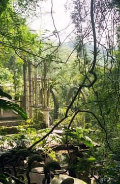 Las Pozas, Mexico: The surreal treasure hidden in the middle of the jungle - Abandoned Spaces