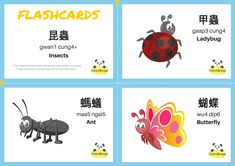 Insects themed bilingual (Chinese - English) Vocabulary Flashcards with Cantonese Jyutping and English Translation. Check out www.cantonsponge.com for more Cantonese language learning ideas or materials!