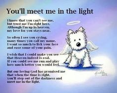 For my friends who lost their furry family members...