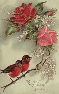 Vintage Birds and Roses Birthday Greetings Postcard Vintage Birthday Cards, Vintage Greeting Cards, Vintage Ephemera, Vintage Paper, Vintage Postcards, Arte Floral, Vintage Pictures, Vintage Images, Vintage Rosen