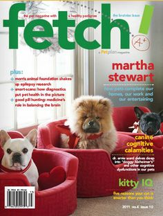 """The """"Brainiac"""" issue of fetch! magazine from Petplan #pet-insurance offers smart tips to help pets tick, with advice on canine cognitive calamities, five reasons why your cat is smarter than you think, and an interview with smart businesswoman @Martha Stewart"""