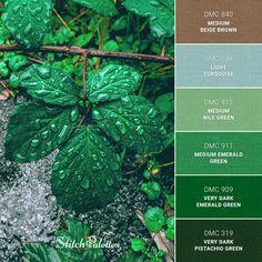 Green Pallete, Green Colour Palette, Blue Palette, Green Colors, Red Succulents, Hex Codes, Find Color, World Of Color, Pallets