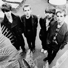 Echo  the Bunnymen