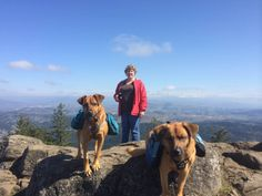 Me and the Grand-dogs atop Spencer Butte, Eugene, OR