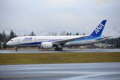 Boeing Commercial Airplane Co. (ANA) Boeing 787-8 Dreamliner N787EX