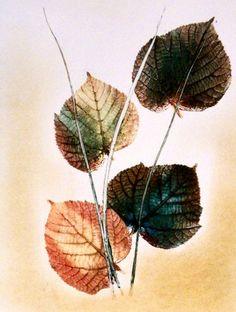 Botanische Kunst. Original stich. Kunst III. von PaperArcsArt auf DaWanda.com