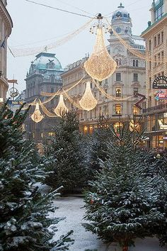 christmas markets in europe // vienna, austria {come for the markets, stay for the palaces, classical concerts, and coffee houses}