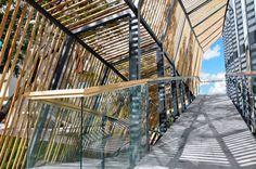 habitat-itsem-leon-by-shine-architecture-taarquituctura02