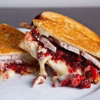 Grilled turkey and brie sandwich with cranberry chutney - Um yes please!