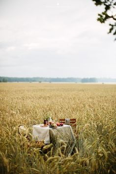 Picnic in the fields? Vie Simple, Fields Of Gold, Photo Images, Picnic Time, Country Life, Country Kitchen, Fresco, Belle Photo, Photos