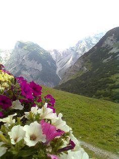 Alpen / Austria