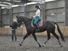 Gareth Hughes lesson all Bespoked Dressage, Equestrian, Bespoke, Horses, Animals, Style, Taylormade, Swag, Animales