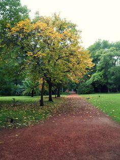 Botanical Garden of Buenos Aires.