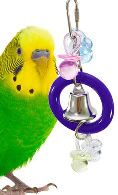 1532 TINI 3 BELL BONKA BIRD TOYS cage toy cages budgie parakeet parrotlet