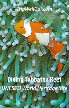 UNESCO World Heritag