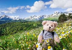 """Leave these items at home when day hiking with kids. Read more tips for day hiking with children in """"Hikes with Tykes: A Practical Guide to Day Hiking with Kids."""""""