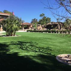 Massive Artificial Lawn in Backyard! Lawn, Dolores Park, Celebrity, Backyard, Travel, Patio, Viajes, Celebs, Backyards