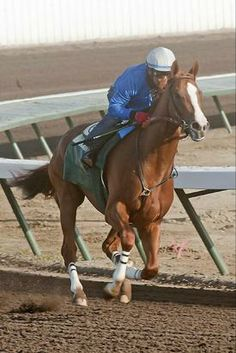 California Chrome leads Derby worktab | 2014 Kentucky Derby & Oaks | May 2 and 3, 2014