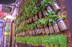 Edible Landscaping: DIY Container Garden | jardin potager | bauerngarten | köksträdgård