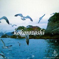 RoseLoveお勧めのBGM(^^♪ (2015/12/19更新)◇LOVE&PEACE /WATARU「志  - kokorosashi -」より)