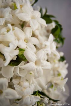 #Stoneblossom #bouquet of #Stephanotis these flowers are so sweet looking