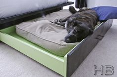 Doggie trundle bed! I love it!!!  http://www.housebella.com/2011/07/13/finishing-touches-platform-bed/