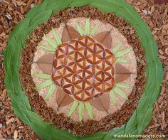 ~made with dried brown leaf on cattail fuzz with dried dock seed heads, buckeye leaf and inner tree core~~ Organic Art, Photo Tree, Flower Of Life, Book Photography, Mandala Art, Medium Art, Sacred Geometry, Fractals, Mandalas