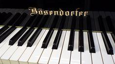 Ivory keyboard...