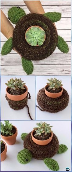 Turtle Succulent Holder  Free pattern via Lion Brand and designed by Knot bad Ami   Im not sure just how practical this is but its cute right? :-)