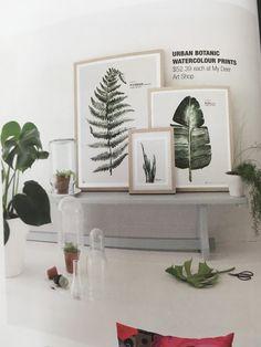 Wunderbar Grüne Wanddekoration: Farn Und Feigenbaumblätter In Bilderrahmen Und Echte  Grünpflanzen Dazu