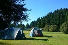 たけくらべ広場 Outdoor Gear, Tent, Camping, Campsite, Store, Tentsile Tent, Outdoor Tools, Outdoor Camping, Tents