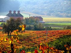 Image from http://www.theinlinegroup.com/svchc/images/Sonoma_in_Autumn.jpg.