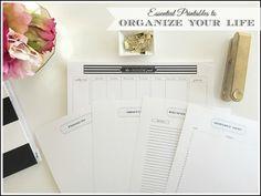 marked-header-basic-organizing-printables