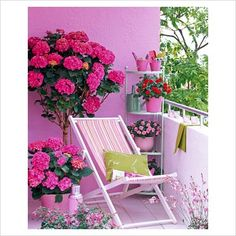 This is a similar balcony to my own, with concrete walls and barrier. Wish I could paint my walls pink!  This is so pretty and fresh.