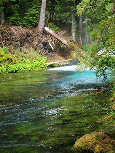 McKenzie River-Sahalie Falls and Koosah Falls.