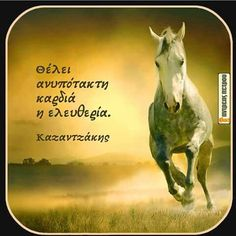 Greek Quotes, Wise Quotes, Book Quotes, Passion Quotes, Beautiful Images, Philosophy, Real Life, Literature, Poetry
