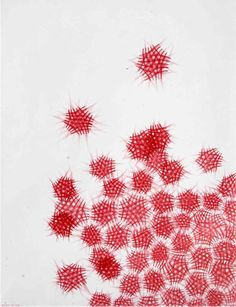 Stylo Bic : la série des rouges. by Seism , via Behance
