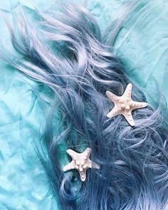 -  Mermaid Hair! Starfish are a great accessory to any look! . Thank you @siashells for the inspiration via @mermaid_posts . #mermaid #mermaidhair #love #beauty #silverhair #seastar #starfish #mermaidaccessories #fashion #mermaidfashion #mermaidlife