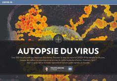 Autopsie du virus - La Presse+ Virus, Movie Posters, Respiratory System, Microbiology, The Nerve, Film Poster, Film Posters