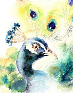 Peacock Watercolor Print Bird Watercolor by CanotStopPrints