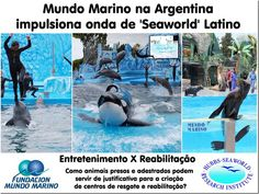 Mural Animal: Mundo Marino na Argentina impulsiona onda de Seaworld Latino Latina, Blog, Entertainment, Animales, Buenos Aires Argentina, Unconditional Love, Waves